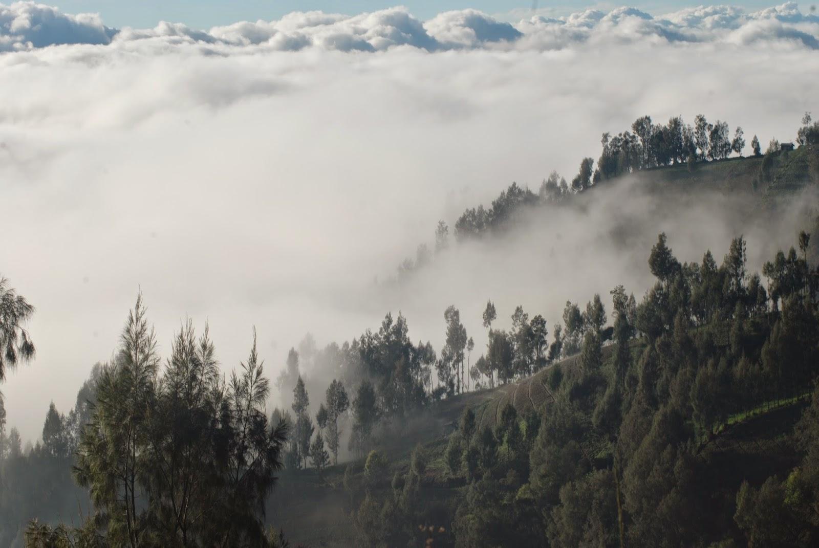 Keindahan Puncak B29 Negeri Diatas Awan Lumajang Bromo Semeru Travel